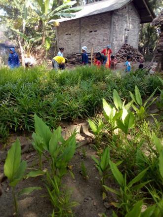 Gotong Royong Sambut Lomba Desa Siaga di Mayungan 1
