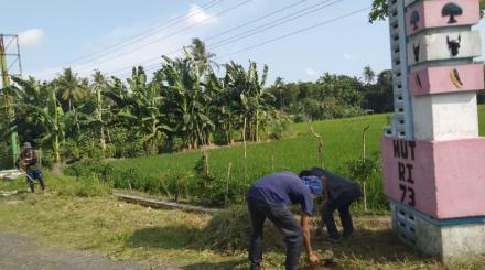 Ijin Masuk Pedukuhan, KKN di Bongoskenti Potong Rumput Liar